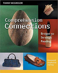 Comprehension Connections Hein8875