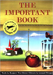 The Important Book Harp2276
