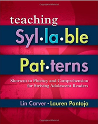 Teaching Syllable Patterns 9781934338391